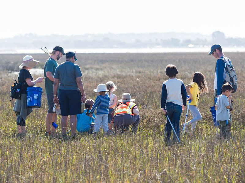 Adults and children examine the marsh ecosystem up close.