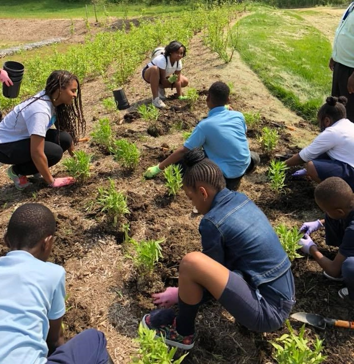 Children planting in a local community rain garden.