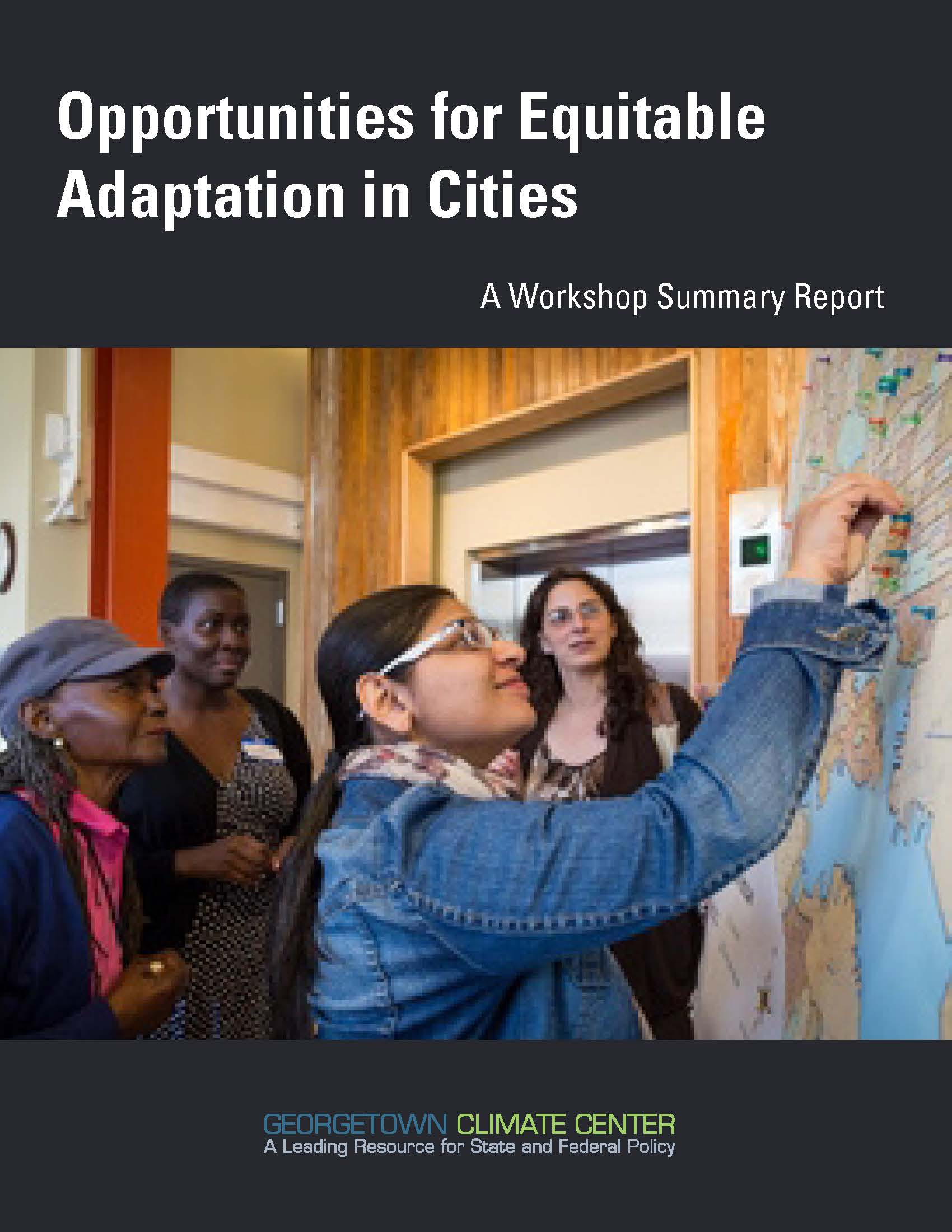 Opportunities for Equitable Adaptation in Cities