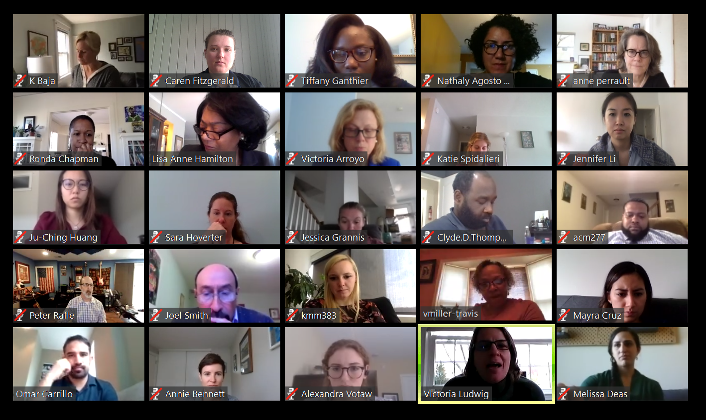 A screenshot of a zoom call with GCC staff and advisors for the toolkit. There are 25 diverse participants from community-based organizations, non-profits, and other experts.